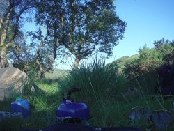 Campsite, Lough Dan, Wicklow